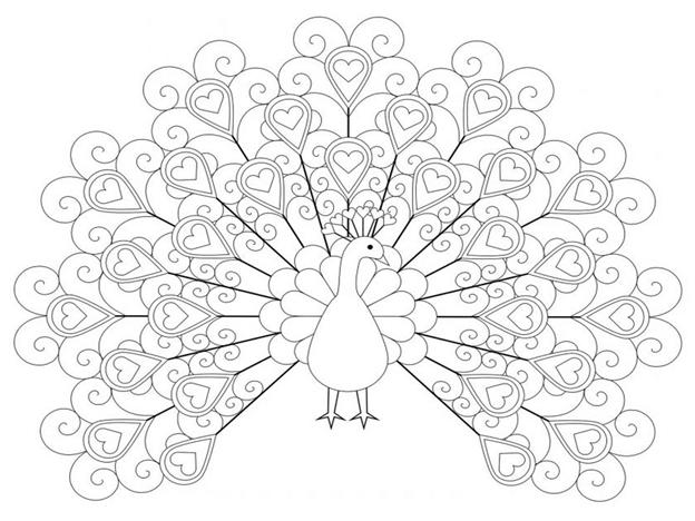 Схема шаблон Павлин