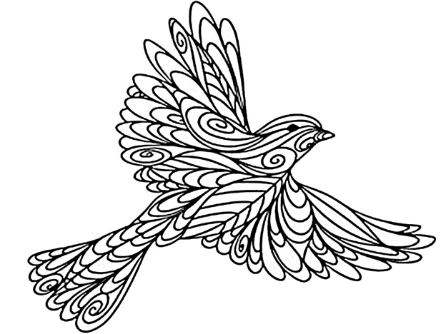 Схема шаблон Птица