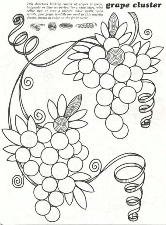 Схема виноградной лозы