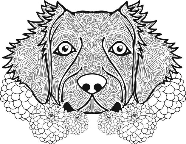 Голова собаки сложный бумажный трафарет