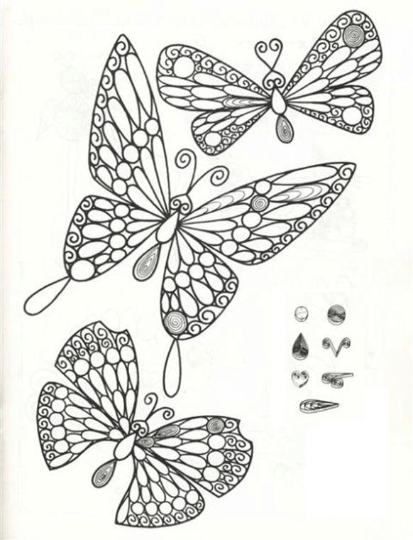 Схема бабочек с разметкой