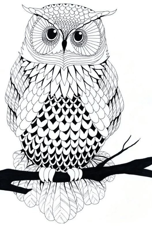 Схема шаблон бумажной совы на ветке