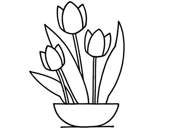 Схема шаблон бумажных цветов тюльпанов в вазочке