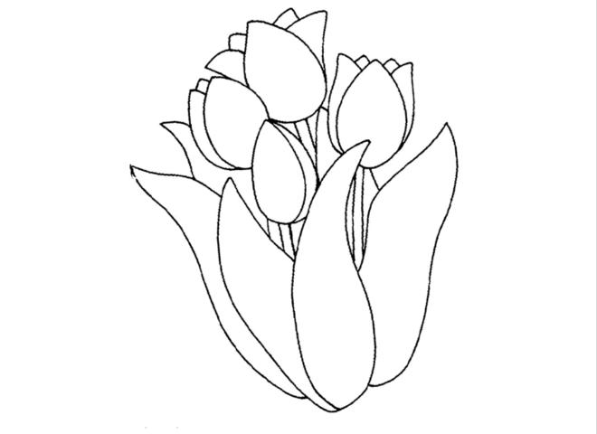 Схема шаблон бумажных тюльпанов
