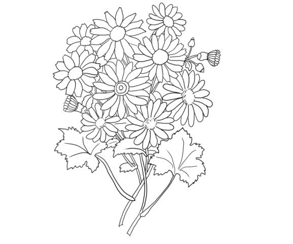Схема шаблон букета бумажных цветов ромашек