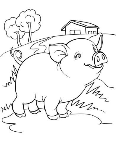 Схема шаблон бумажной свинки