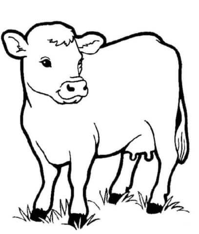 Схема шаблон бумажной коровы