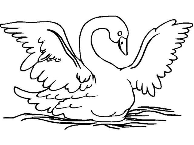 Схема шаблон бумажного лебедя