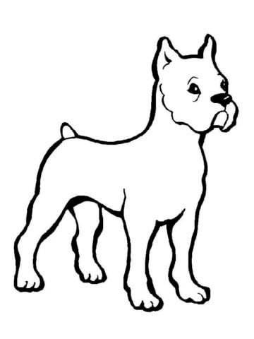 Схема шаблон бумажного щенка
