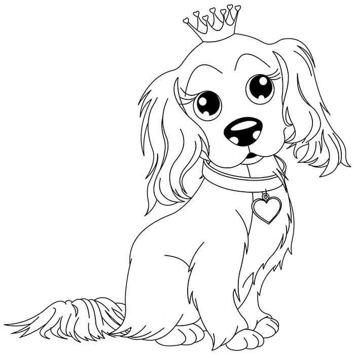 картинки про собак и щенят раскраски оказывает двоякое