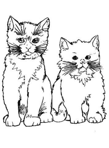 Схема шаблон бумажного котика