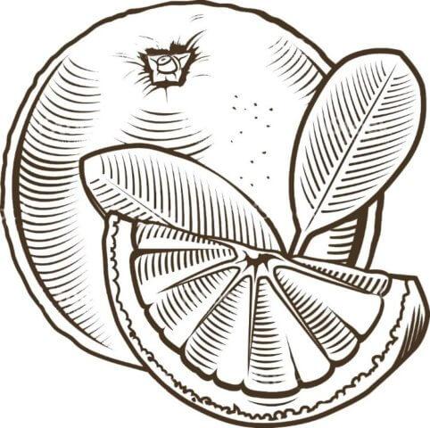 Схема для распечатки в виде апельсина