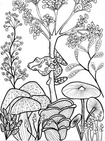 Схема для распечатки в виде лягушки