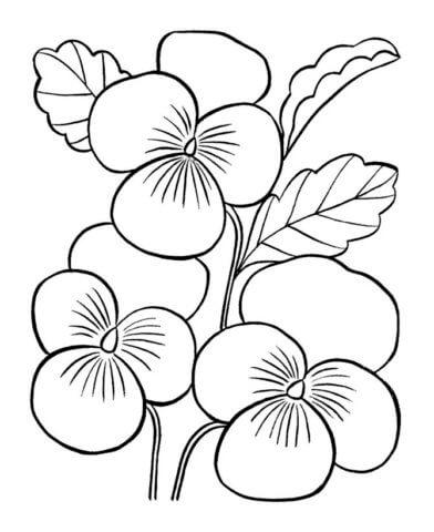 Схема для распечатки в виде орхидеи