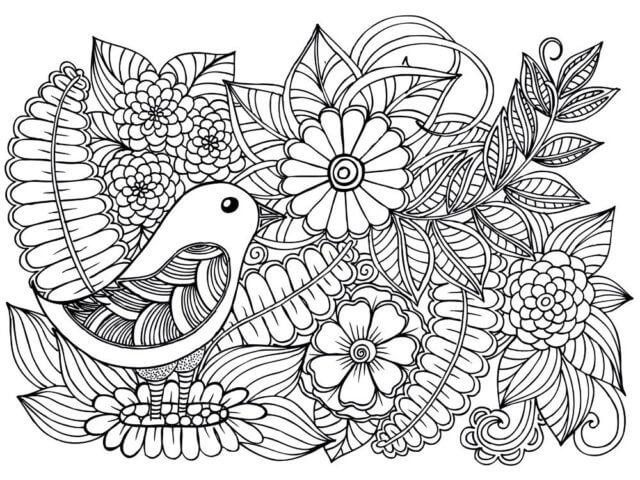 Схема для распечатки в виде птички