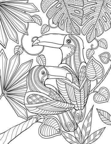 Схема для распечатки в виде птиц